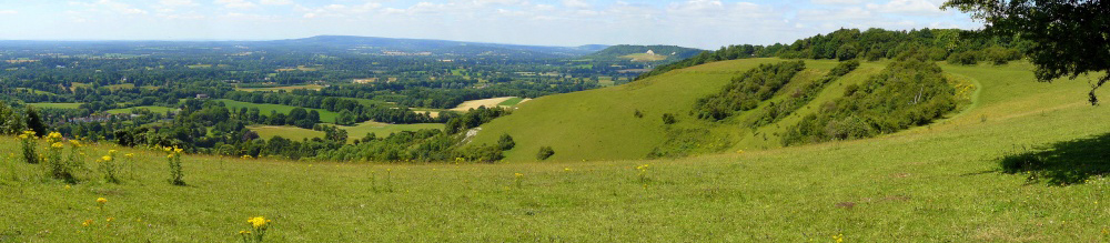 Colley Hill, Surrey Hills